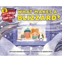 What Makes a Blizzard? (Let's-Read-and-Find-Out Science, Level 2)