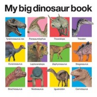 My Big Dinosaur Book (Board Book)