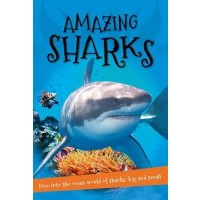It's All About … Amazing Sharks