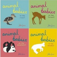 Animal Babies and their Habitats Collection (40 Board Books)