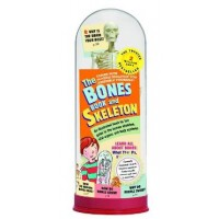 The Bones Book and Skeleton (*Carton of 12 Sets)