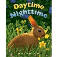 Daytime Nighttime (Board Book)