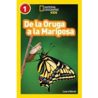 De la Oruga a la Mariposa (Caterpillar to Butterfly, Spanish Edition) (National Geographic Readers, Level 1)