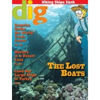 Dig Magazine (Annual Subscription - 5 copies per issue)