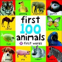 Bright Baby: First 100 Animals (*Carton of 16 Board Books)