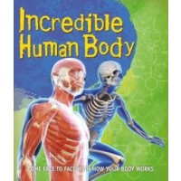 Fast Facts: Incredible Human Body