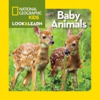 National Geographic Kids Look and Learn: Baby Animals (Board Book)
